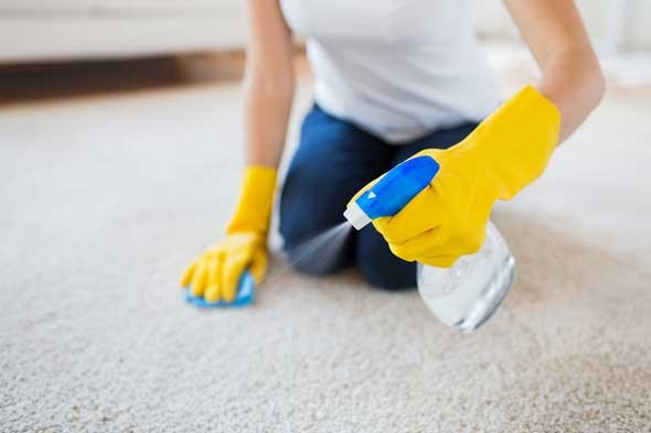 carpet cleaning Bath