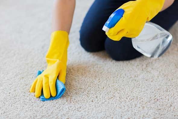 carpet cleaners Bristol